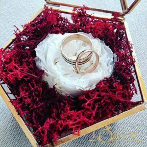 Terariu - Trandafir Criogenat Englezesc